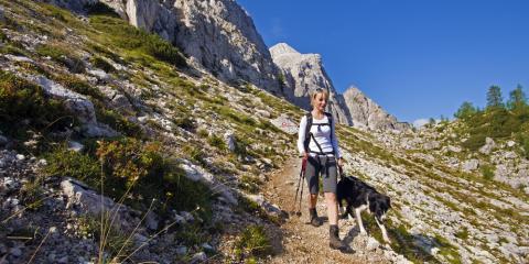 Want to Take Your Pup for a Hike? Local Veterinarian Shares 5 Tips, Bainbridge Island, Washington