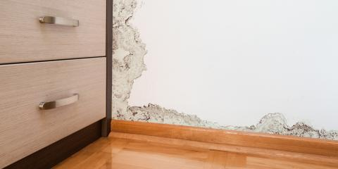 3 Signs of Water Damage in Your Home, Lincoln, Nebraska