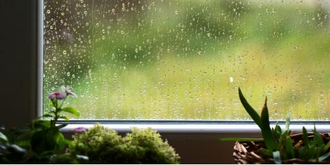 3 Ways to Protect Your Home From the Effects of Water Damage, Lincoln, Nebraska