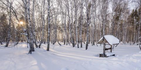 Why You Need a Clear Path to Your Pump for Water Well Service, Fairbanks North Star, Alaska