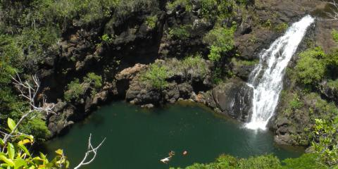 What Cultural Sites Can You Expect to See During Your Visit to Waimea Valley?, Koolauloa, Hawaii