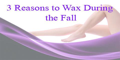 3 Reasons to Wax During the Fall, Topsail, North Carolina