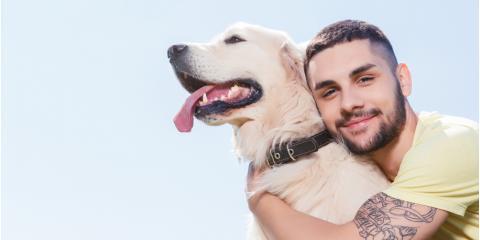 Veterinarian Offers 3 Tips to Singles Adopting a New Pet, Waynesboro, Virginia