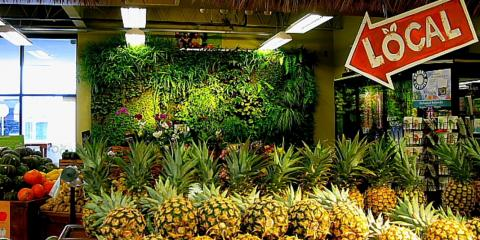 How Living Walls of Organic Produce Benefit Restaurants, Ewa, Hawaii