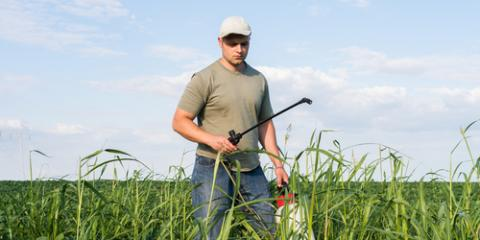 How Can I Make Sure I'm Buying the Right Weed Control Solution?, Whiteville, Arkansas