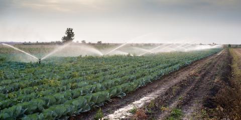 3 Ways Farmers Benefit From Irrigation Wells, Cairo, Georgia