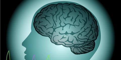 How to Maximize the Benefits of Brain Optimization, Denver, Colorado