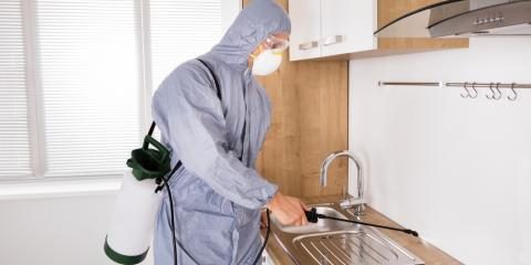 5 Ways to Prepare Your Home for a Professional Fumigation, St. Charles, Missouri