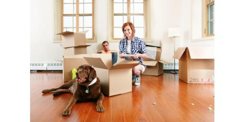 Prepare Your Pets For The Move With These Tips From West Side Movers, Manhattan, New York