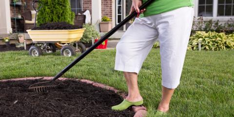 3 Tips for Springtime Tree Care, Wharton, New Jersey
