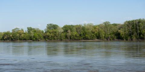 Rainbow Trout, Fishing Lodges & Fun: What to Know About the White River, Whiteville, Arkansas