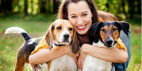 How Divorce Courts Decide Who Gets the Family Pet, Central Whidbey Island, Washington