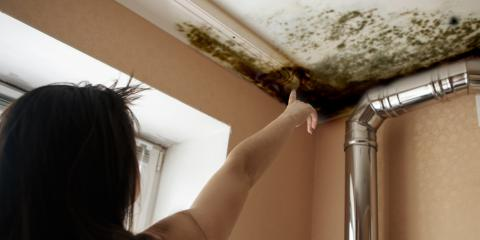 What to Do If There's Mold in Your Rental Property, Whitefish, Montana