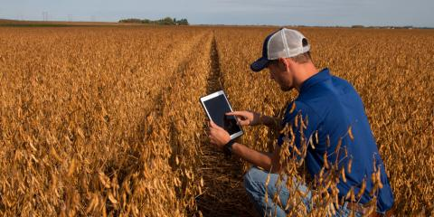 Farming Services Experts Explain the Basics of Precision Agriculture, Adams, Wisconsin