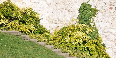 5 Ways to Tell Your Yard Needs a Retaining Wall, Mukwonago, Wisconsin