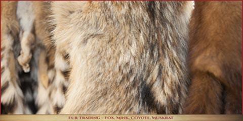Discover North America's Leader in Fur & Hide Trading, Eitzen, Minnesota