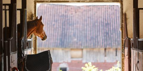 4 Considerations for Planning a Custom Horse Barn, Union, Ohio
