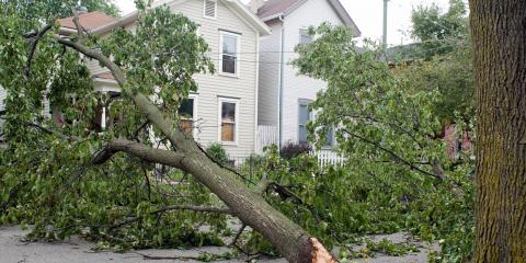 3 Ways to Protect Your Home From Wind Damage, Lehigh, Pennsylvania