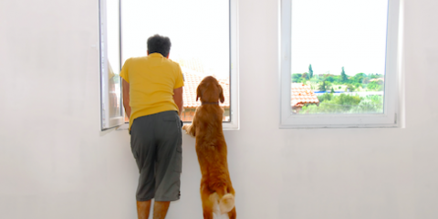 Sliding vs. Hung Windows: Cincinnati Home Improvement Experts Explain the Difference, Green, Ohio