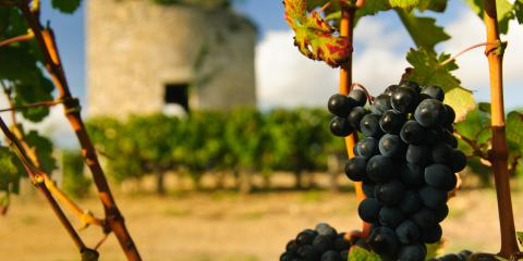 3 Wine Growing Regions in France, Honolulu, Hawaii