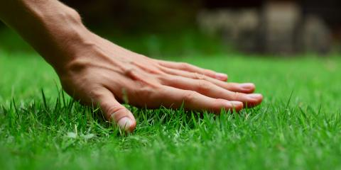 5 Lawn Care Product Recommendations for a Greener, Healthier Lawn, Winona, Minnesota