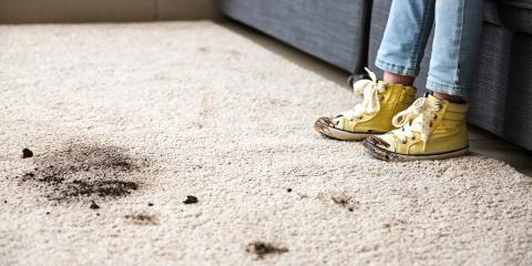 3 Carpet Stain Removal Tricks for Winter Stains, Grand Rapids, Wisconsin
