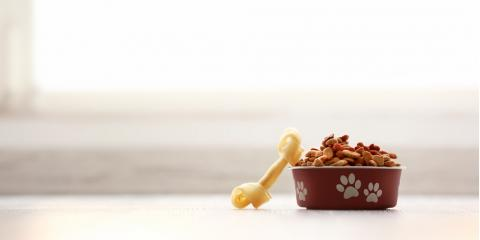 3 Questions Your Local Pet Clinic Wants You to Ask About Your Pet's Food, Wisconsin Rapids, Wisconsin