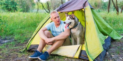 3 Heartworm Disease Preventives Every Dog Owner Should Consider, Shelby, Wisconsin