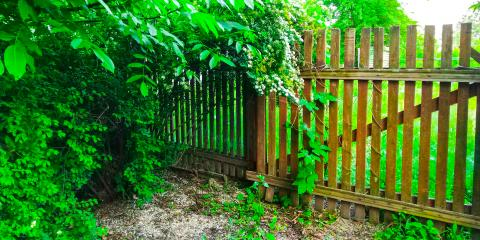 How to Maintain Your Wooden Fence This Spring, Statesboro, Georgia