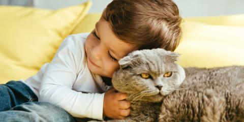 Should Your Child Be Present During Pet Euthanasia?, Atlanta, Georgia