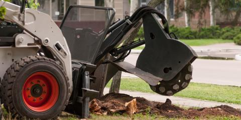 Common Questions About Tree Stump Grinding, Woodstock, Georgia