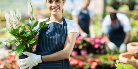 5 Types of Small Business Insurance Every Entrepreneur Needs , Willimantic, Connecticut