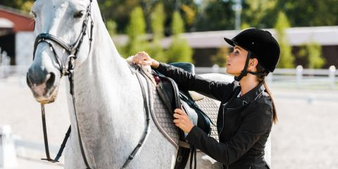 What Are the Differences Between Western & English Saddles?, Lebanon, Ohio
