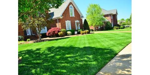 Free Lawn Treatment, Cincinnati, Ohio