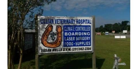 Lillian Veterinary Hospital, Veterinarians, Health and Beauty, Lillian, Alabama