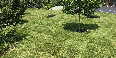 Free Aeration with Fertilization Prepay, Beavercreek, Ohio