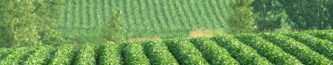 Farm Labor & Management in Lincoln, Nebraska