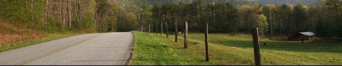 Landscape Contractors in Randolph, North Carolina