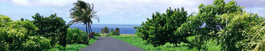Security Systems in Hilo, Hawaii